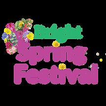 BSF-Facebook Logo.png