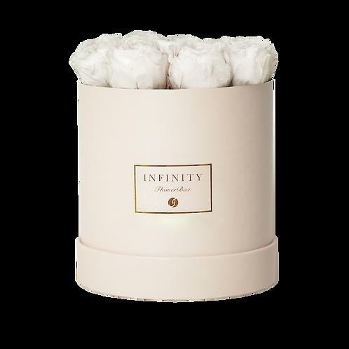 Austin Rose - Champagne White
