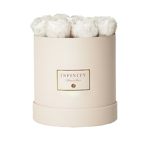 Austin Rose - Champagne White PRE-ORDER
