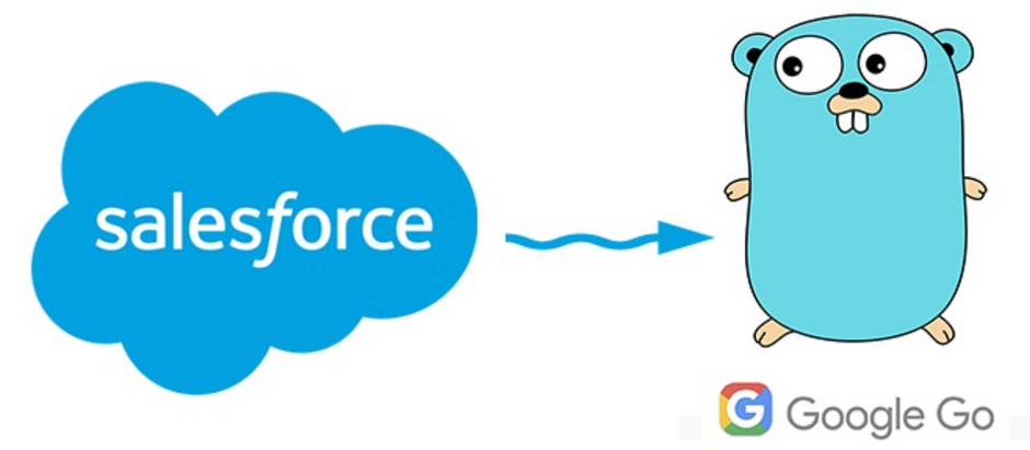Authenticate Salesforce from Golang using connected app JWT bearer token flow