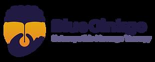 BG-Logo-Typo-500px.png