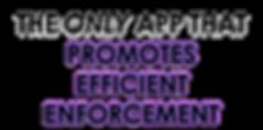 Efficient Enforcement2.png