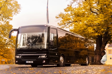 GloBus Buss #5.jpg