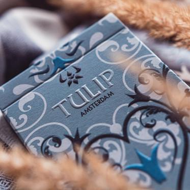 Tulip_006.jpg