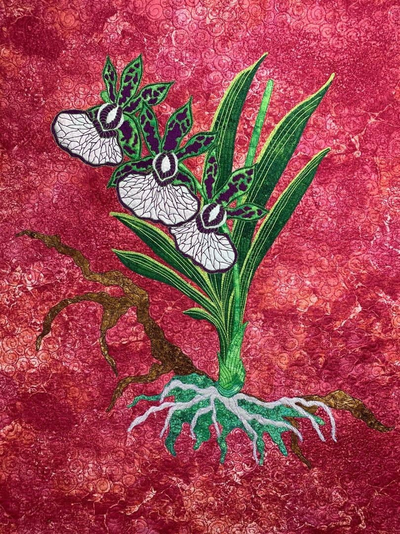 Orchideae Magnificus