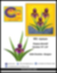 Patron d'appliqué pour la courtepointe - patchwork - Fleur Iris - Collection Inédith