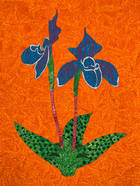 Orchideae Frivolum