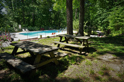 Pool and picnic area