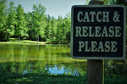 Catch & release pond
