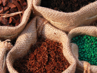 Developing the Nutrition Profile of Your Potting Mix