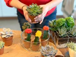 Flower Therapy workshop pre firmy