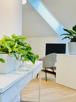 Flower Therapy Green Office