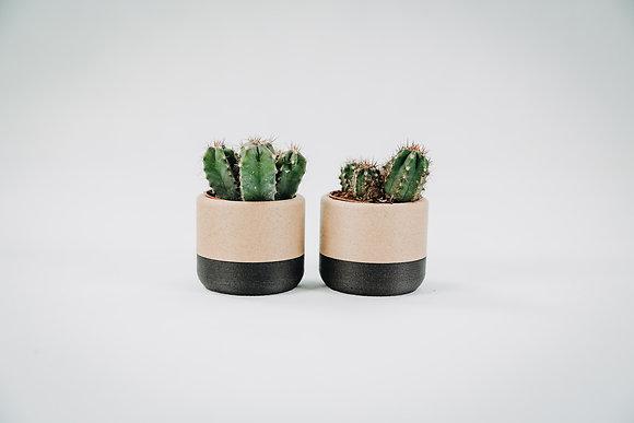 3D Pots s kaktusom - prírodná+ čierna/ 3 ks