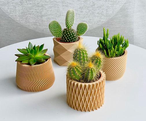 3D Pots kvetinace s kaktusom prirodne