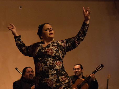 FLAMENCO AND WINE AT SCHOLARSHIP FUNDRAISER