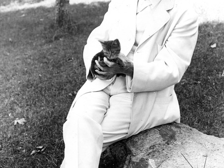 Famous Writers Who Loved Cats