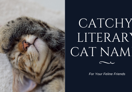 6 Catchy Literary Cat Names Perfect for Your Furry Friend