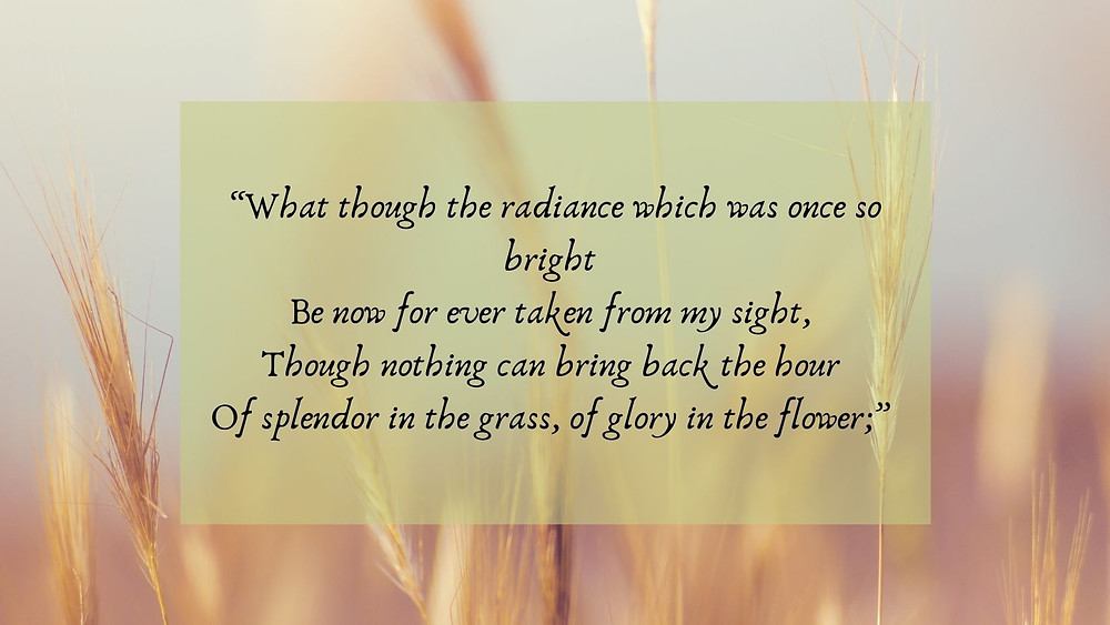 What though the radiance which was once so bright  Be now for ever taken from my sight,  Though nothing can bring back the hour  Of splendor in the grass, of glory in the flower;
