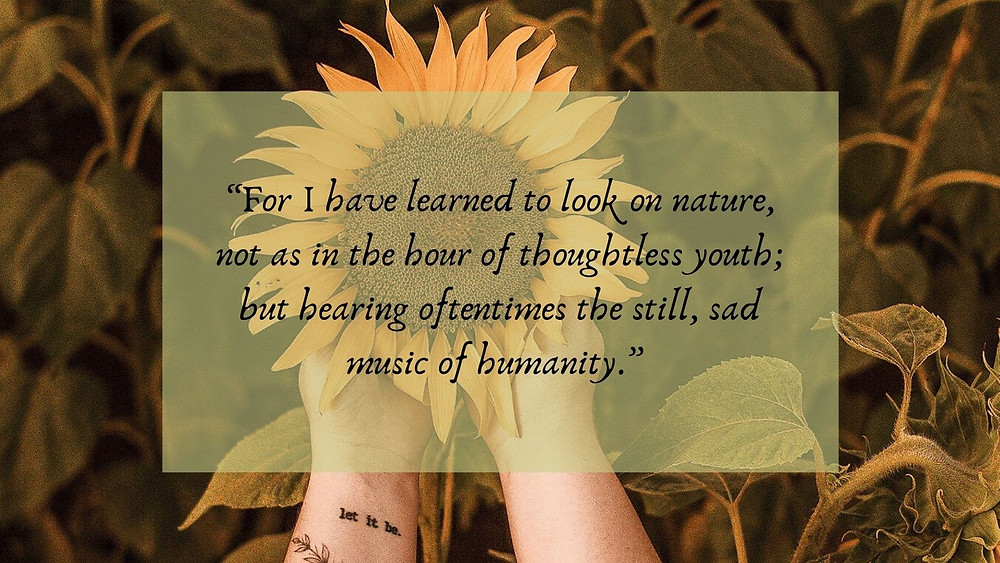 for I have learned to look on nature, not as in the hour of thoughtless youth; but hear oftentimes the still, sad music of humanity
