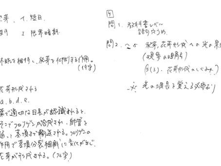 【読みにくい文字は自習効率を下げる】きれいなノートをとる方法