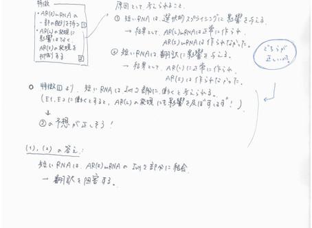 2019年度生物 過去問分析【千葉大学】