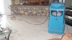 Commercial Dehumidifier for mold