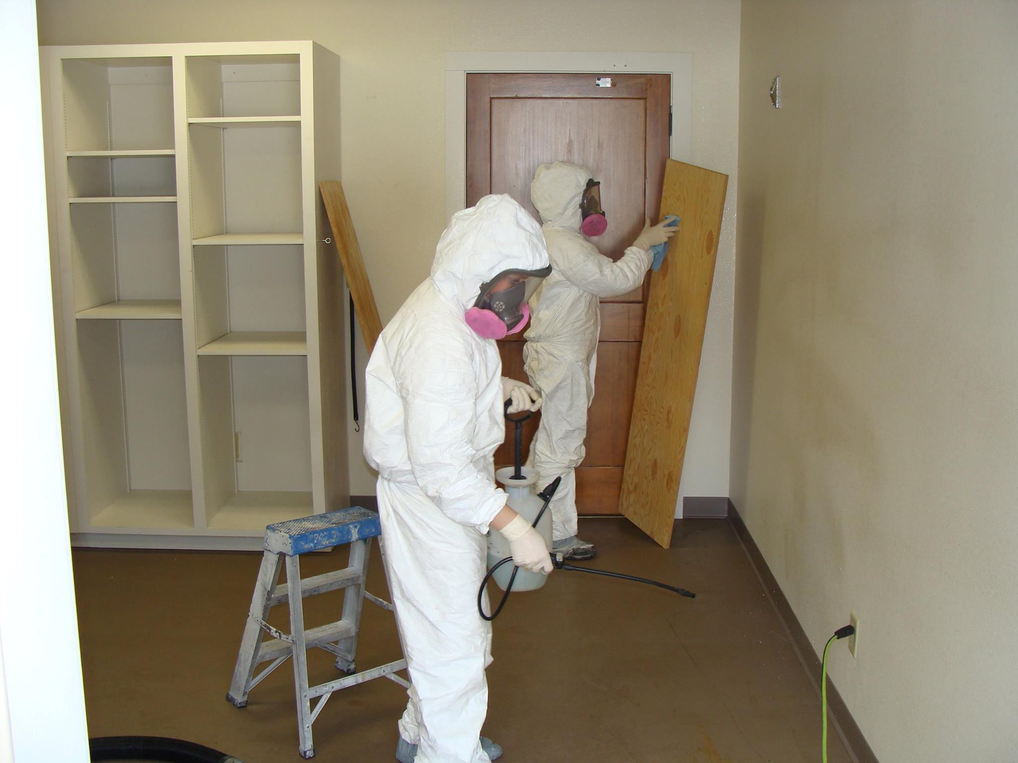 Sanatizing & disinfecting mold
