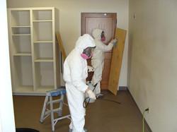 Sanatizing & disinfecting mold