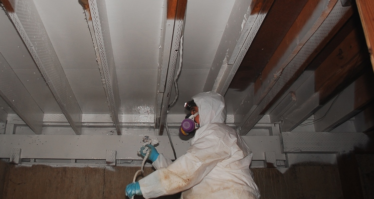 Final stage of mold remediation