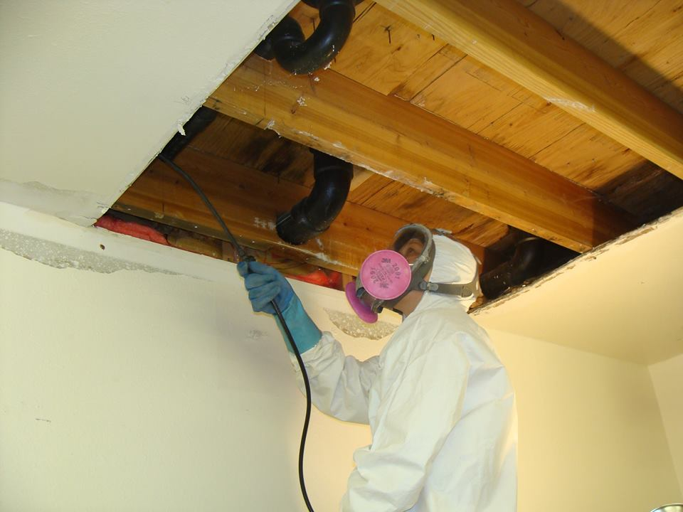 Mold behind ceilings