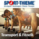 Affiliate-Banner-Teamsport-Fitness-250x2