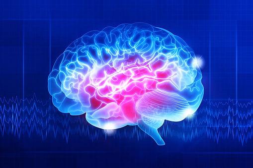Human brain on a dark blue background. D