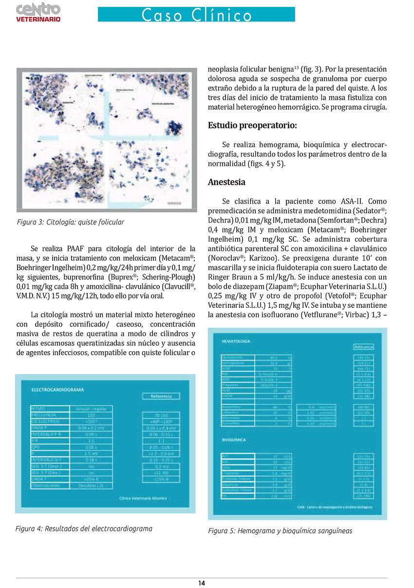 CV89 - Altamira Atresia CAE 2019-4.jpg