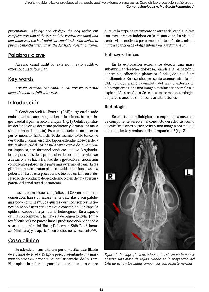 CV89 - Altamira Atresia CAE 2019-3.jpg
