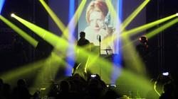 Aladdin Insane David Bowie Tribute
