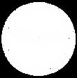 pinpals_logo_icon_white.png