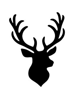 Stag's Head Pinboard