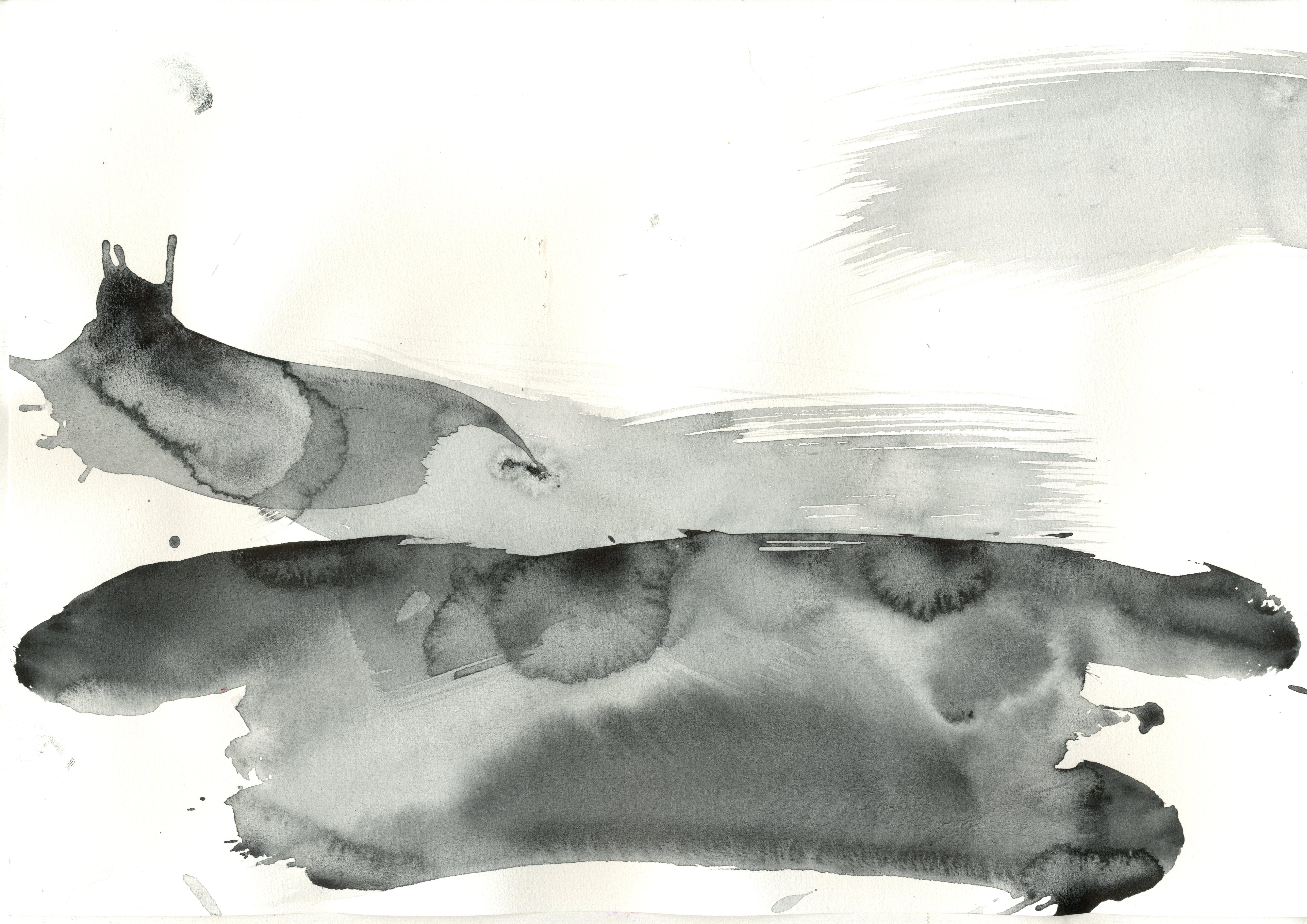 akvareli peleks005