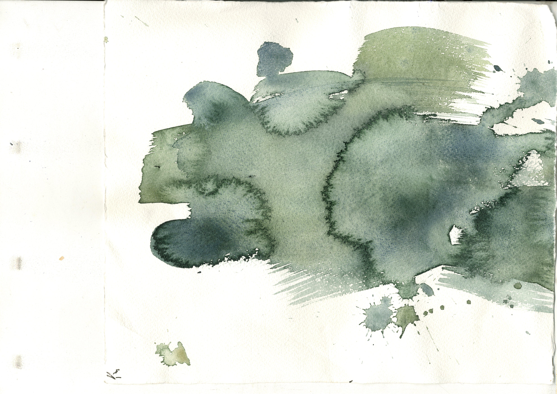 akvareli darzeni009