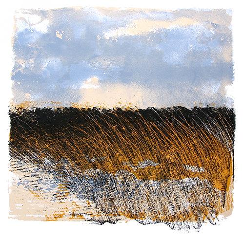 Lough Erne Reed Bed - Silkscreen