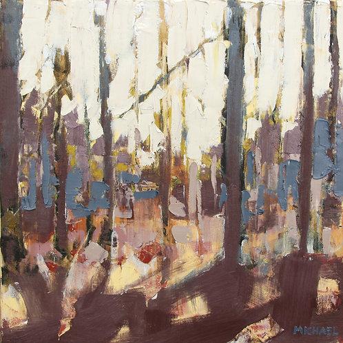 Autumn Sunlight II
