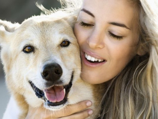 Are There Mental Health Benefits of Owning a Dog?