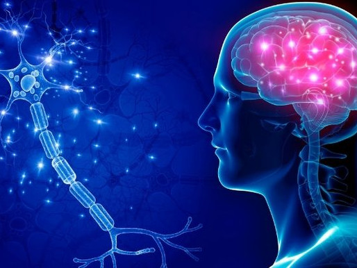 Is ADHD a Mental Health Illness?