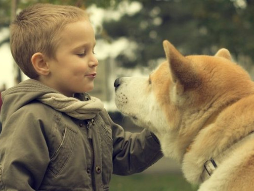 3 Ways to Help Kids Cope with the Loss of a Pet