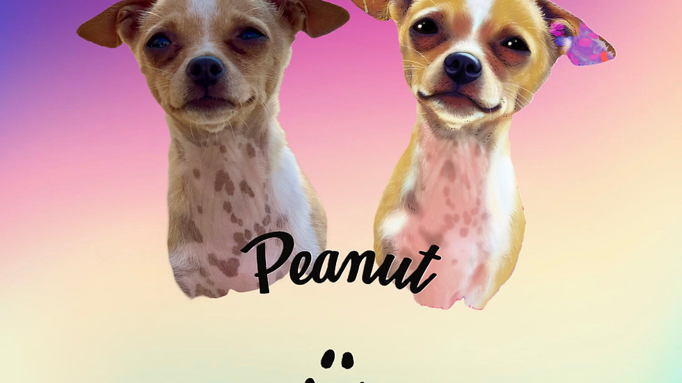 March 2021 - Peanut