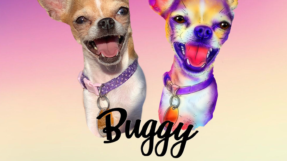 February 2021 - Buggy