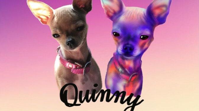 December 2020 - Quinny