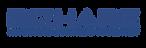 hires logo bizhare biru.png