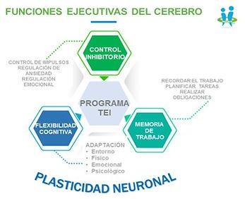 FUNCIONES-EJECUTIVAS-GRANDE (1).jpg