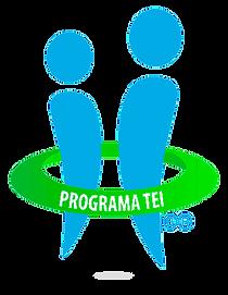 logo-tei-manual1.png